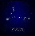 zodiac constellation pisces astrology vector image vector image