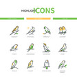 Pet birds - modern line design style icons set