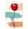 abstract line art tulip flower with color vector image