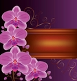 Background with exotic flower orchids vector image vector image