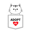 cat sitting in pocket adopt me red heart cute vector image vector image