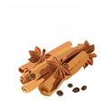 Cinnamon sticks and anise star vector image