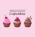 delicious and sweet cupcakes vector image vector image