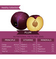 healthy collection fruits vector image vector image