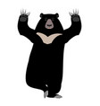 himalayan bear yoga yogi wild animal emoji black