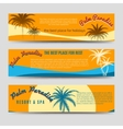 Palm Paradise banners set vector image