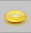 translucent soft gel capsule eps 10 vector image vector image