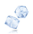 two ice cubes are isolated on the white background vector image