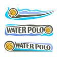 water polo ball vector image vector image