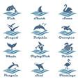 aquatic animals set vector image vector image