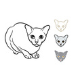 Drawing of adorable cat with three styles small vector image vector image