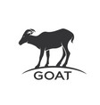 goats mountain on white background wild animals vector image vector image