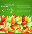 natural floral autumn template vector image vector image