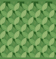 seamless pattern with doodle foliage in a row vector image vector image