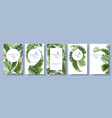 tropical leaves frames vector image vector image