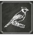 sketch bird white dark background vector image