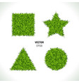 green grass circle vector image vector image