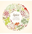 Spices and herbs icons in circle composition vector image vector image