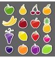 Fruit Icons Sticker Set vector image