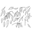 a set of black and white hand-drawn leaves of vector image