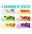 color diet rainbow fruits and vegetables vector image vector image