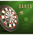 Darts board background vector image