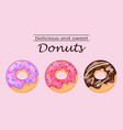 delicious and sweet donuts vector image vector image