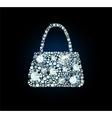 Diamond Handbag vector image