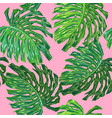 floral tropical seamless pattern palm leaves vector image