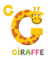 g is for giraffe letter g giraffe cute animal vector image vector image