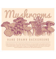 hand drawn mushrooms background autumn gourmet vector image vector image