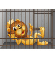 Lion being locked in the cage vector image vector image