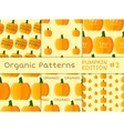 Organic seamless pattern collection Fresh vector image vector image
