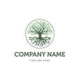 trees logo designs vector image vector image
