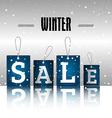 Winter sale vector image