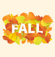 fall banner template with bright autumn leaves vector image