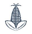 figure delicious and healthy corn vegan food vector image vector image