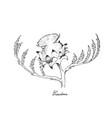 hand drawn of fresh cardoon flower on white backgr vector image