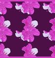 pattern of dwarf korean azalea vector image vector image