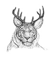 Psychedelic hand-drawn sketch of tiger face with vector image vector image