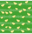 seamless pattern with chickens on grass vector image