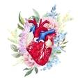 Watercolor heart with flowers vector image vector image