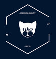 cat - logo protect sign icon vector image