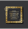 exclusive product and shiny frame premium quality vector image vector image