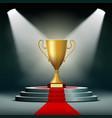 gold cup winner vector image