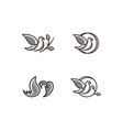 logo of birds icon line art gray color vector image