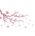 sakura blossom branch falling petals flowers vector image vector image