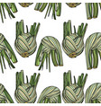 seamless pattern with fennel vector image vector image