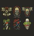 set skateboarding emblems vector image