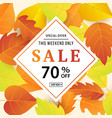 autumn sale banner template with fall leaves vector image vector image